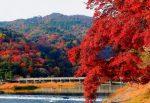 嵐山 紅葉 おすすめコース
