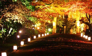 関西 滋賀 紅葉 名所 日吉神社
