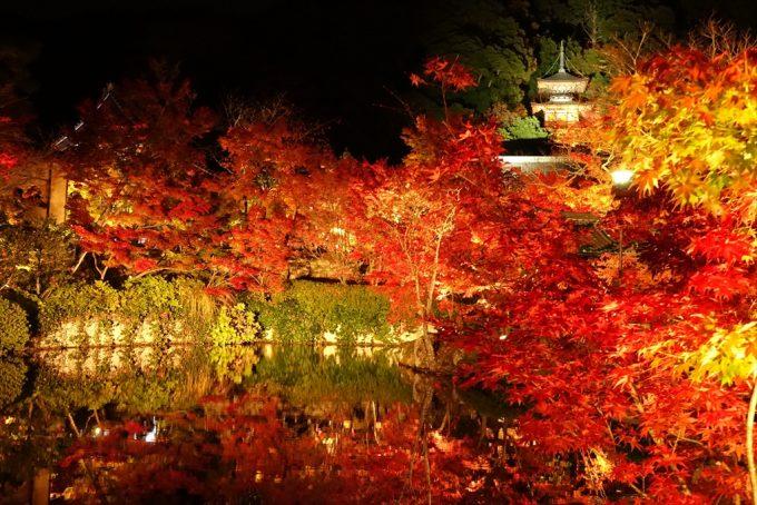 関西 京都 紅葉 名所 ライトアップランキング