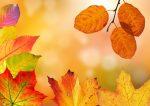 挨拶文 10月 書き出し 結びの文 例文 上旬 中旬 下旬 季語 時候