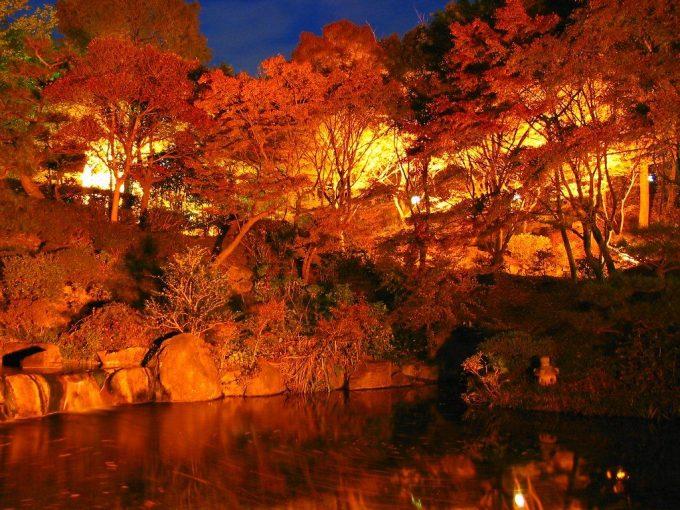 関西 兵庫 紅葉 名所ランキング 穴場ライトアップ