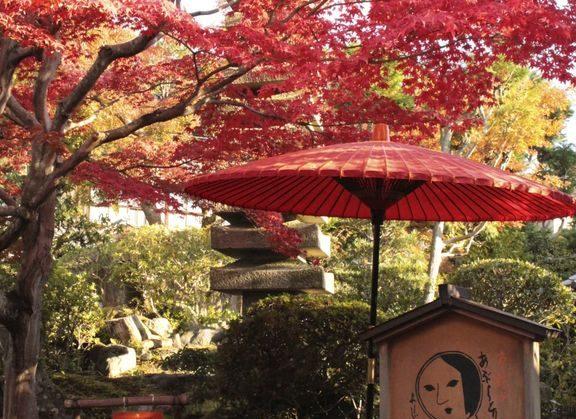 京都 カフェ 紅葉 インスタ映え フォトジェニック