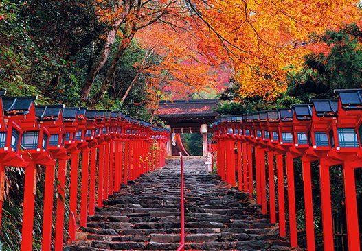 京都 紅葉 インスタ映え スポット