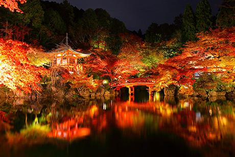 京都 醍醐寺 紅葉 見頃 ライトアップ アクセス