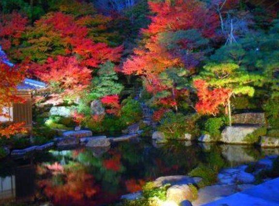 関西 滋賀 紅葉 名所 百済寺