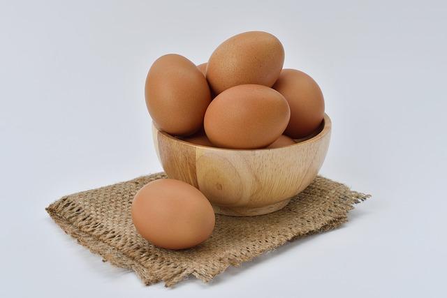 egg-1618854_640