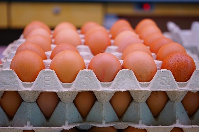 egg-318227_640