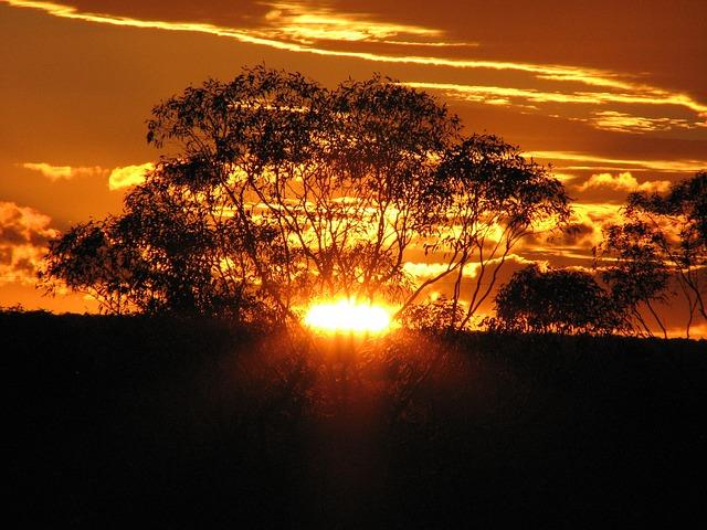 golden-sunset-173594_640