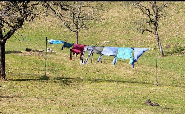 laundry-291168_640