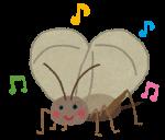 鈴虫 コウロギ 松虫 キリギリス カンタン 秋の虫鳴き声