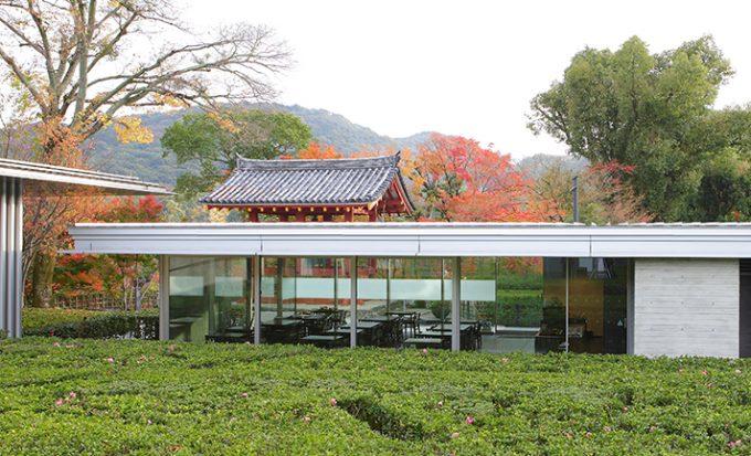 京都 お寺の境内 カフェ 醍醐寺 平等院 仏光寺