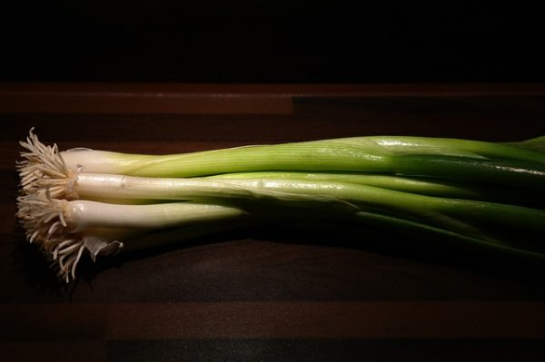 winter-onion-228041_640