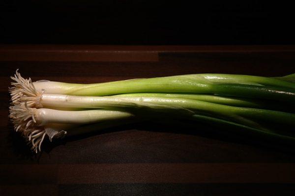 winter-onion-228041_640